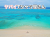 【ヤバイTシャツ屋さん】[アー写・ロゴあり]4th_single「どうぶつえんツアー」-サイズ大
